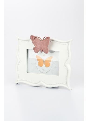 Kelebek Çerçeve-Paolo Ferri